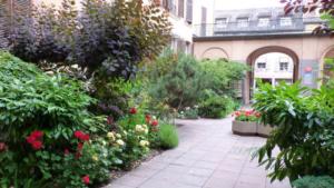 Airbnb élit Colmar comme la ville la plus accueillante de France